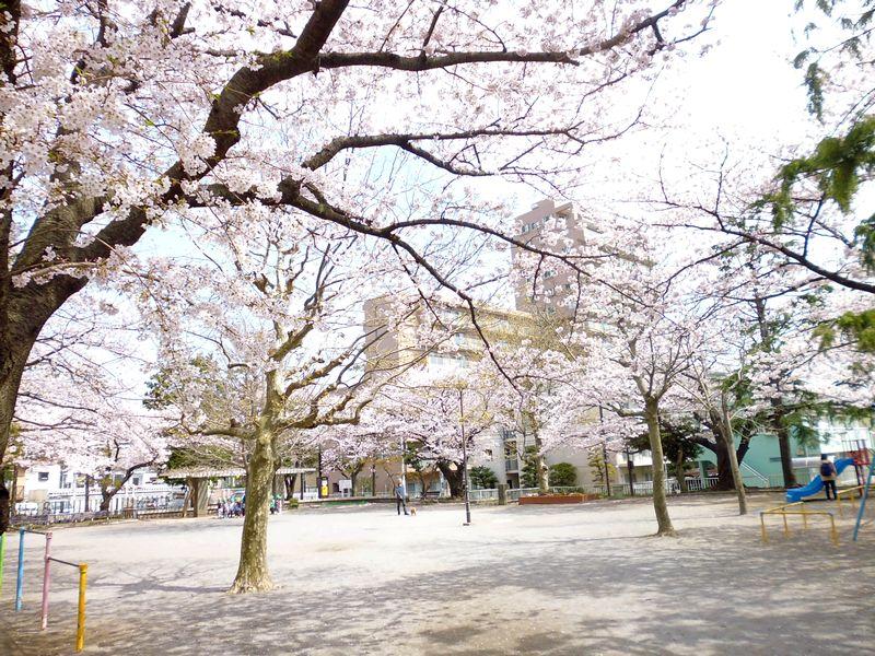 若尾山公園